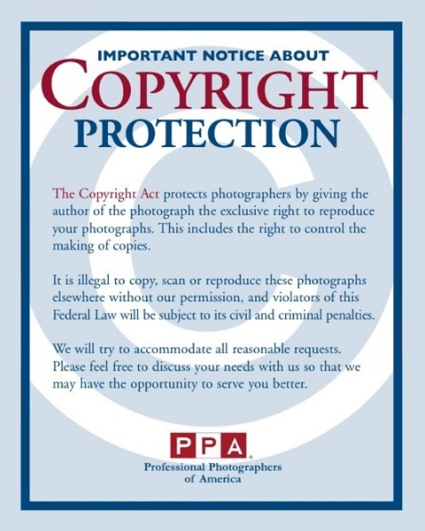 Copyright Notice Templates  Free Printable Word  Pdf