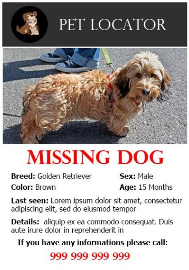missing pet poster templates